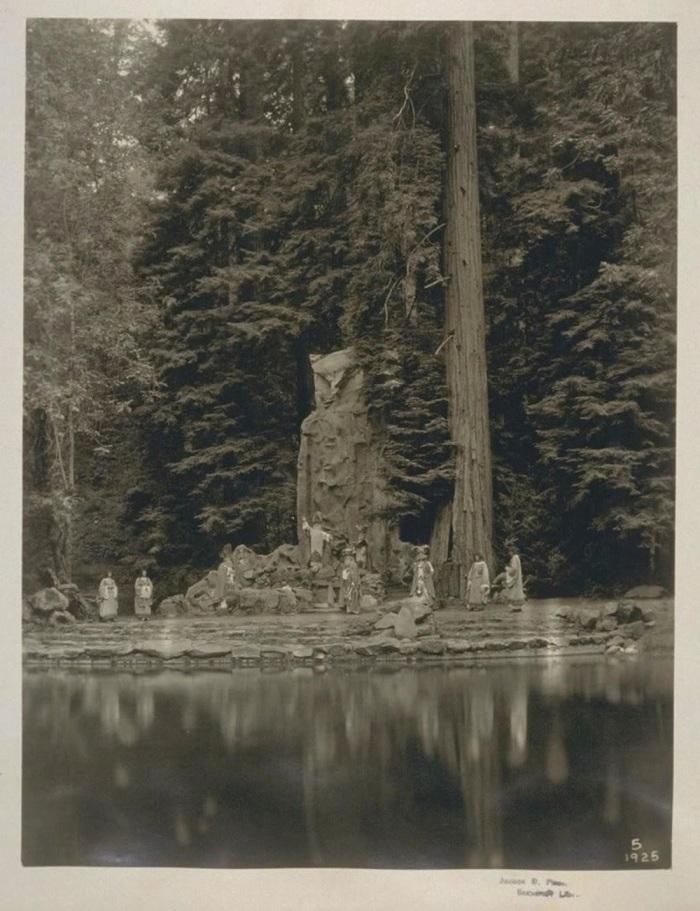 Owl Tumblr Bohemian Grove | vesse...
